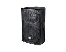 "TW10 10"" Two Way Full Range Speaker"