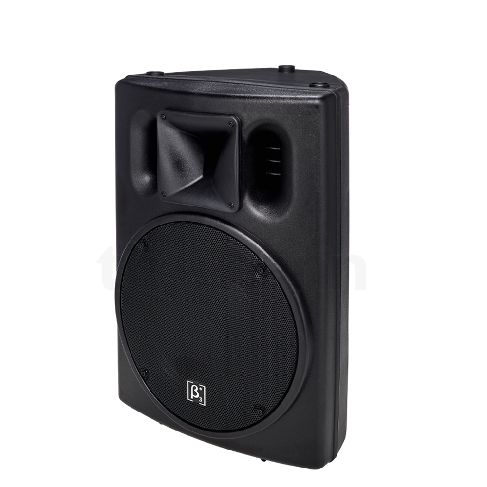 "CTM1000B 10"" Two-way Full Range Active Speaker"