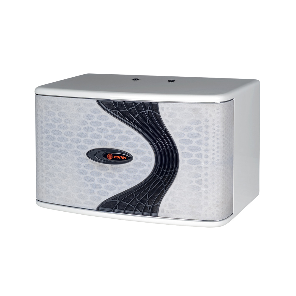 "HONEY 12P - 12"" Karaoke Speaker"