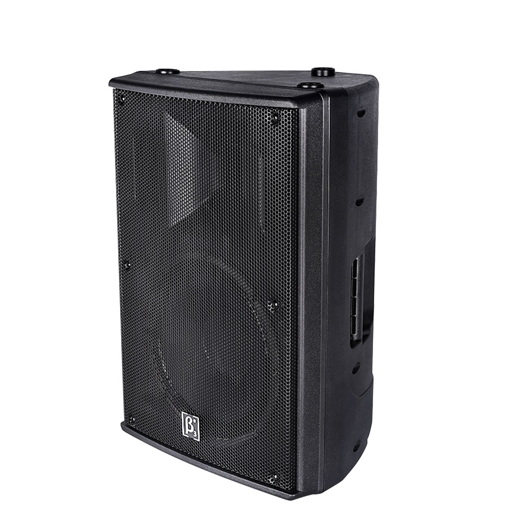 "N12 12"" Two Way Full Range Plastic Speaker"