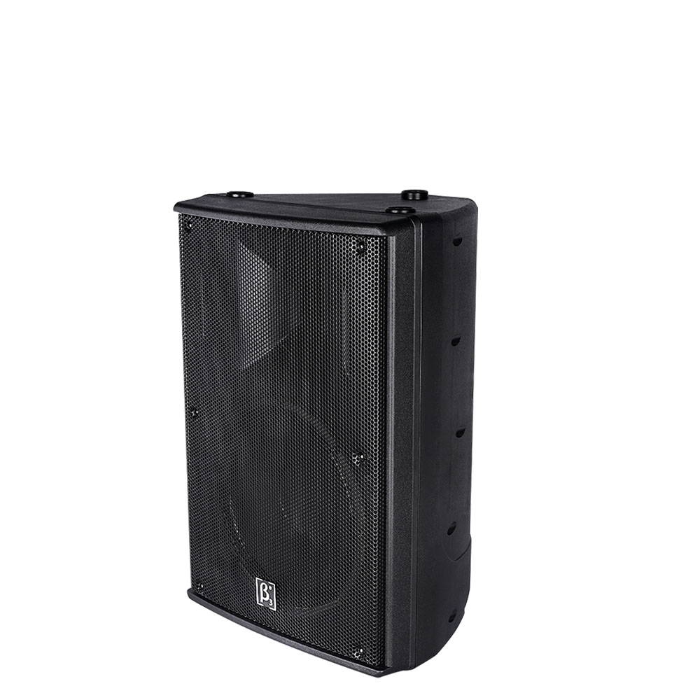 "N8 8"" Two Way Full Range Plastic Speaker"