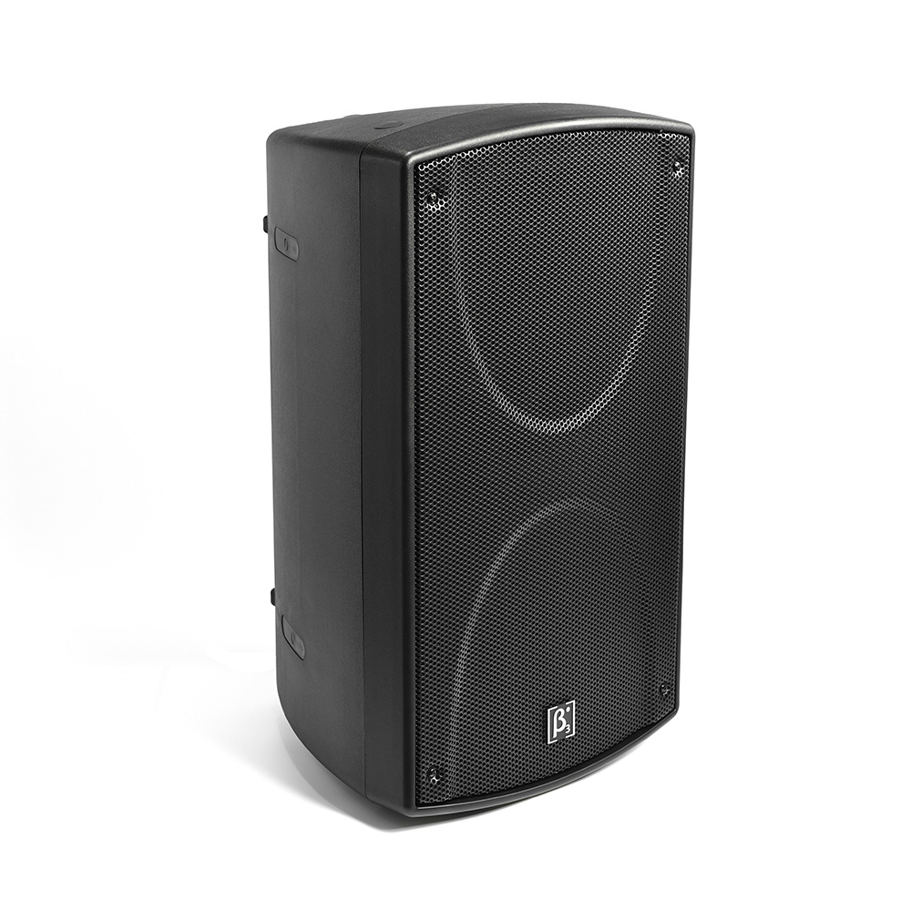 "S1200N 12"" Two Way Full Range Speaker"
