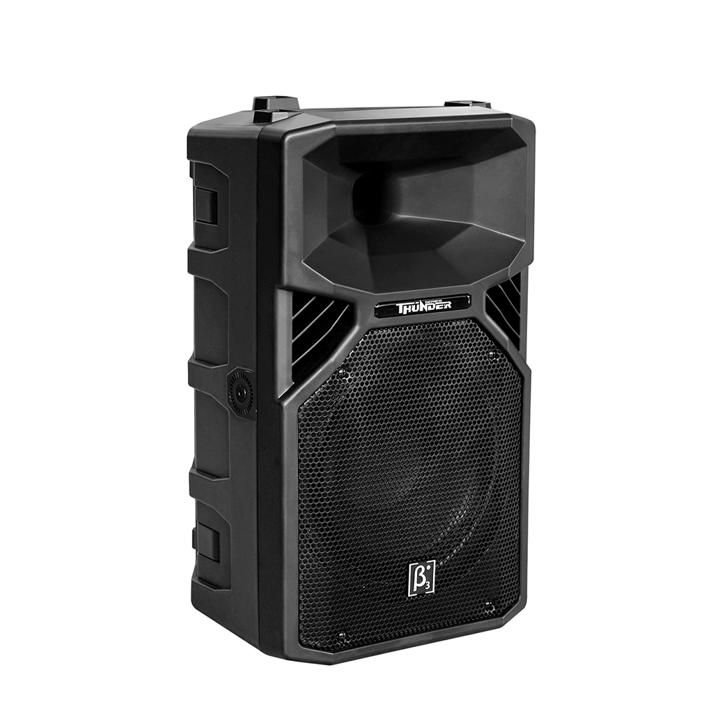 "T12 12"" Two Way Full Range Plastic Speaker"