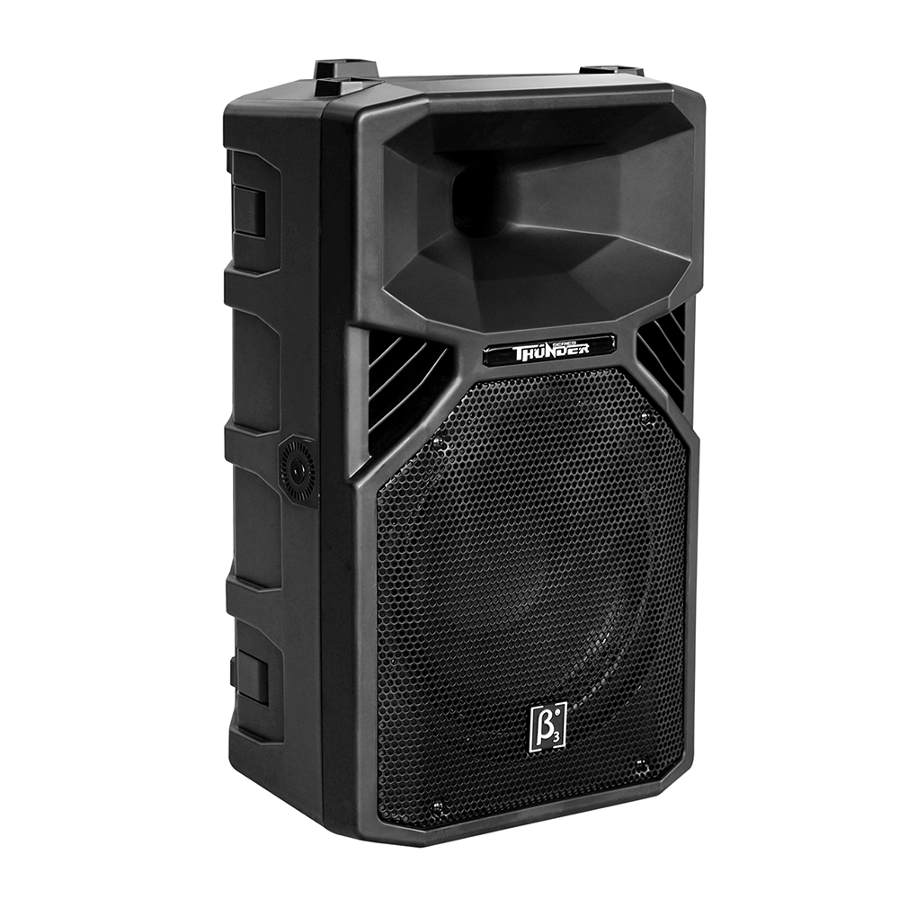 "T15 15"" Two Way Full Range Plastic Speaker"